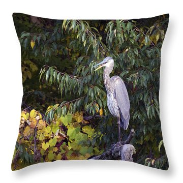 Blue Heron Perched In Tree Throw Pillow