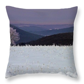 Throw Pillow featuring the photograph Blue Highand Winter by Christian Mattison