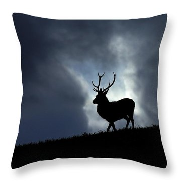 Blue Horizon Throw Pillow