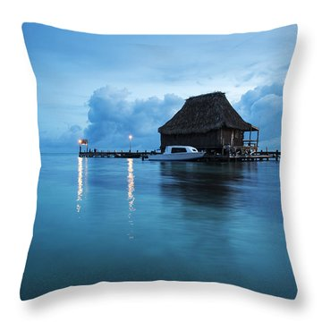Blue Hour Landscape Throw Pillow
