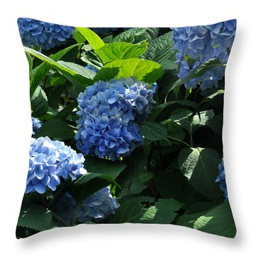 Blue Hydrangea Throw Pillow by Diane Lent
