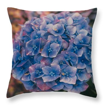 Blue Hydrangea Throw Pillow by Heather Kirk