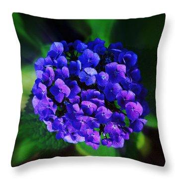 Blue Hydrangea Throw Pillow by Nick Kloepping
