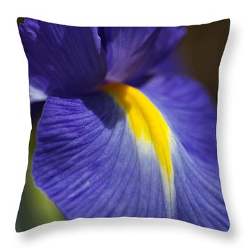 Blue Iris With Yellow Throw Pillow