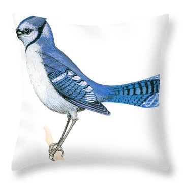 Blue Jay  Throw Pillow by Anonymous