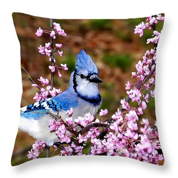 Blue Jay In The Pink Throw Pillow by Randall Branham