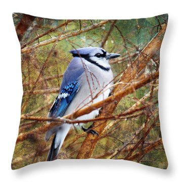 Throw Pillow featuring the photograph Blue Jay by Trina  Ansel