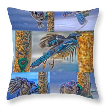 Blue Jays In Motion Throw Pillow by Constantine Gregory