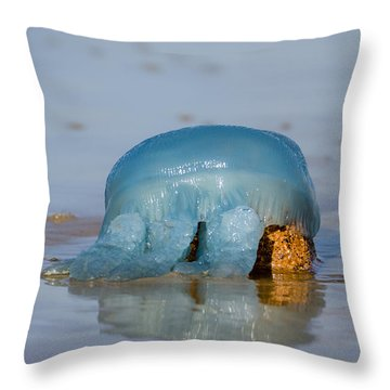 Throw Pillow featuring the photograph Blue Jellyfish 01 by Kevin Chippindall