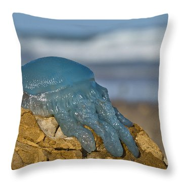 Blue Jellyfish 02 Throw Pillow by Kevin Chippindall