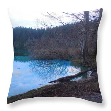 Blue Lake Padden Throw Pillow by Karen Molenaar Terrell