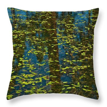 Throw Pillow featuring the photograph Blue Lake Reflections by Sherri Meyer