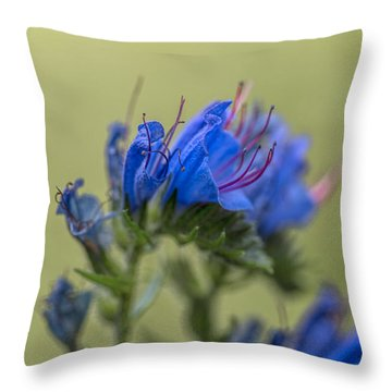 Throw Pillow featuring the photograph Blue by Leif Sohlman