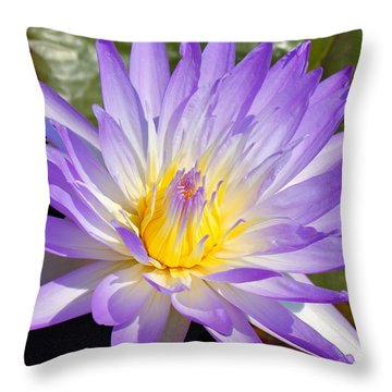 Blue Lily Throw Pillow