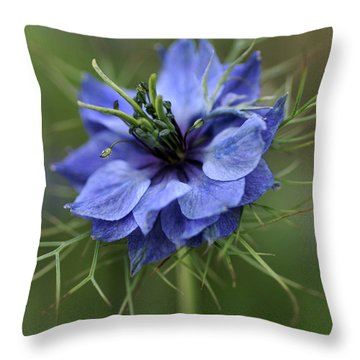 Throw Pillow featuring the photograph Blue Love by Joy Watson