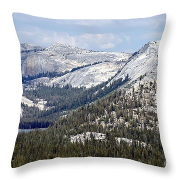 Throw Pillow featuring the photograph Blue Majesty by Mary Lou Chmura
