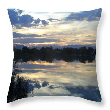 Blue Mirror Throw Pillow