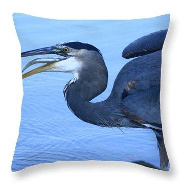 Blue Gulp Throw Pillow