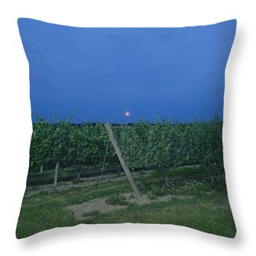 Throw Pillow featuring the photograph Blue Moon by Robert Nickologianis