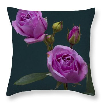 Blue Moon Roses Throw Pillow