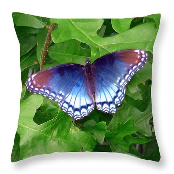 Throw Pillow featuring the photograph Red Spotted Purple Butterfly by Jim Whalen