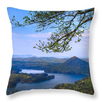 Blue Mountains Throw Pillow by Debra and Dave Vanderlaan