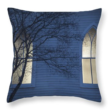 Blue Mulberry Throw Pillow