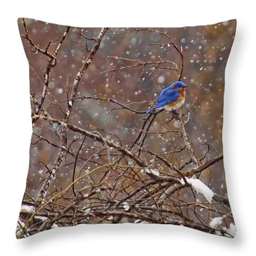 Throw Pillow featuring the photograph Blue Norther by Gary Holmes