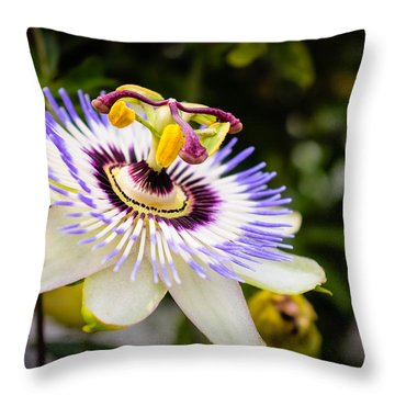 Blue Passion Flower Throw Pillow