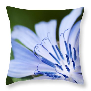 Blue Poetry.. Throw Pillow by Nina Stavlund