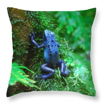 Blue Poison Dart Frog Throw Pillow by DejaVu Designs