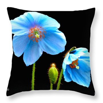 Throw Pillow featuring the photograph Blue Poppy Flowers # 4 by Jeannie Rhode