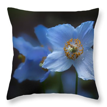 Blue Poppy Throw Pillow by Jacqui Boonstra