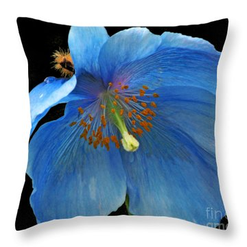 Blue Poppy On Black Throw Pillow