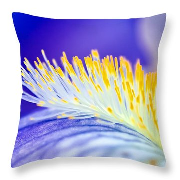 Blue Rapsody Throw Pillow