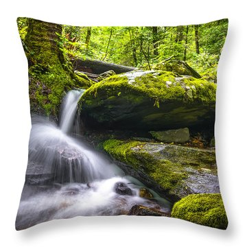 Blue Ridge Cascade Throw Pillow by Serge Skiba