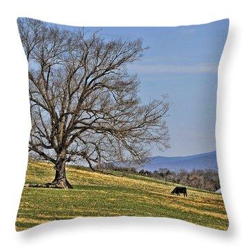 Blue Ridge Farm Throw Pillow