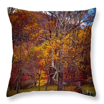 Blue Ridge Fenced In Fall Throw Pillow
