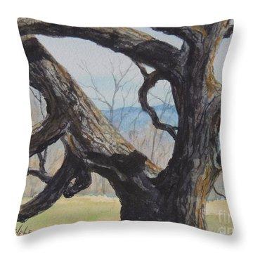 Blue Ridge Memories...sold Throw Pillow