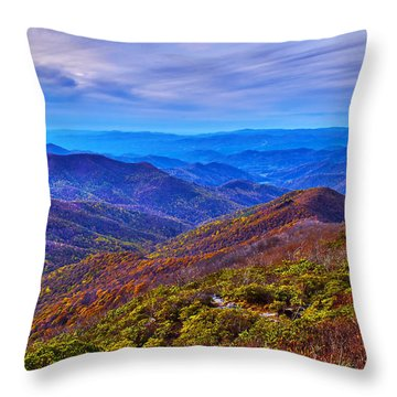 Throw Pillow featuring the photograph Blue Ridge Parkway by Alex Grichenko