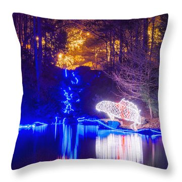 Blue River - Crop Throw Pillow