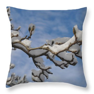 Blue Skies In Winter Throw Pillow by Bill Cannon