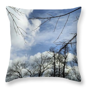 Throw Pillow featuring the photograph Blue Skies Of Winter by Robyn King