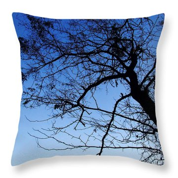 Blue Sky Throw Pillow by Andrea Anderegg