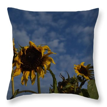 Throw Pillow featuring the photograph Blue Sky Buddies by Brian Boyle