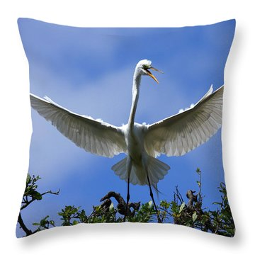 Blue Sky Landing Throw Pillow