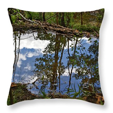 Throw Pillow featuring the photograph Blue Sky Reflecting by Jeremy Rhoades