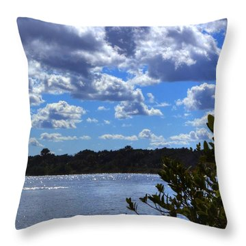 Throw Pillow featuring the photograph Blue Sky by Tyson Kinnison