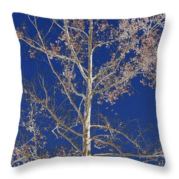 Blue Sky With A Twist Of Birch Throw Pillow