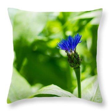 Blue Spot In The Green World - Featured 3 Throw Pillow by Alexander Senin